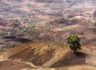 landscape of ethiopia