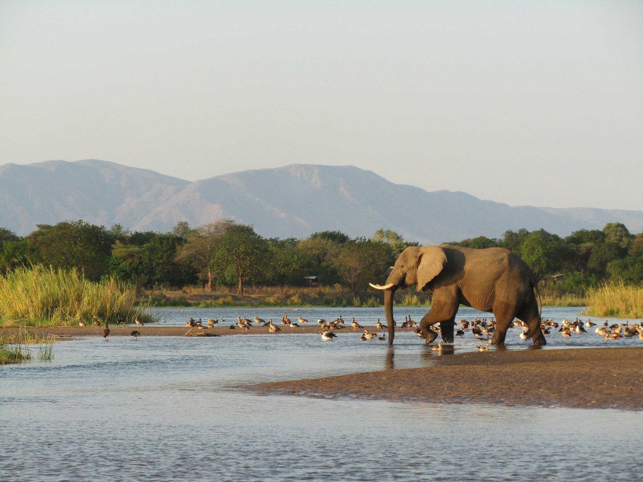 Zambezi Valley natural park