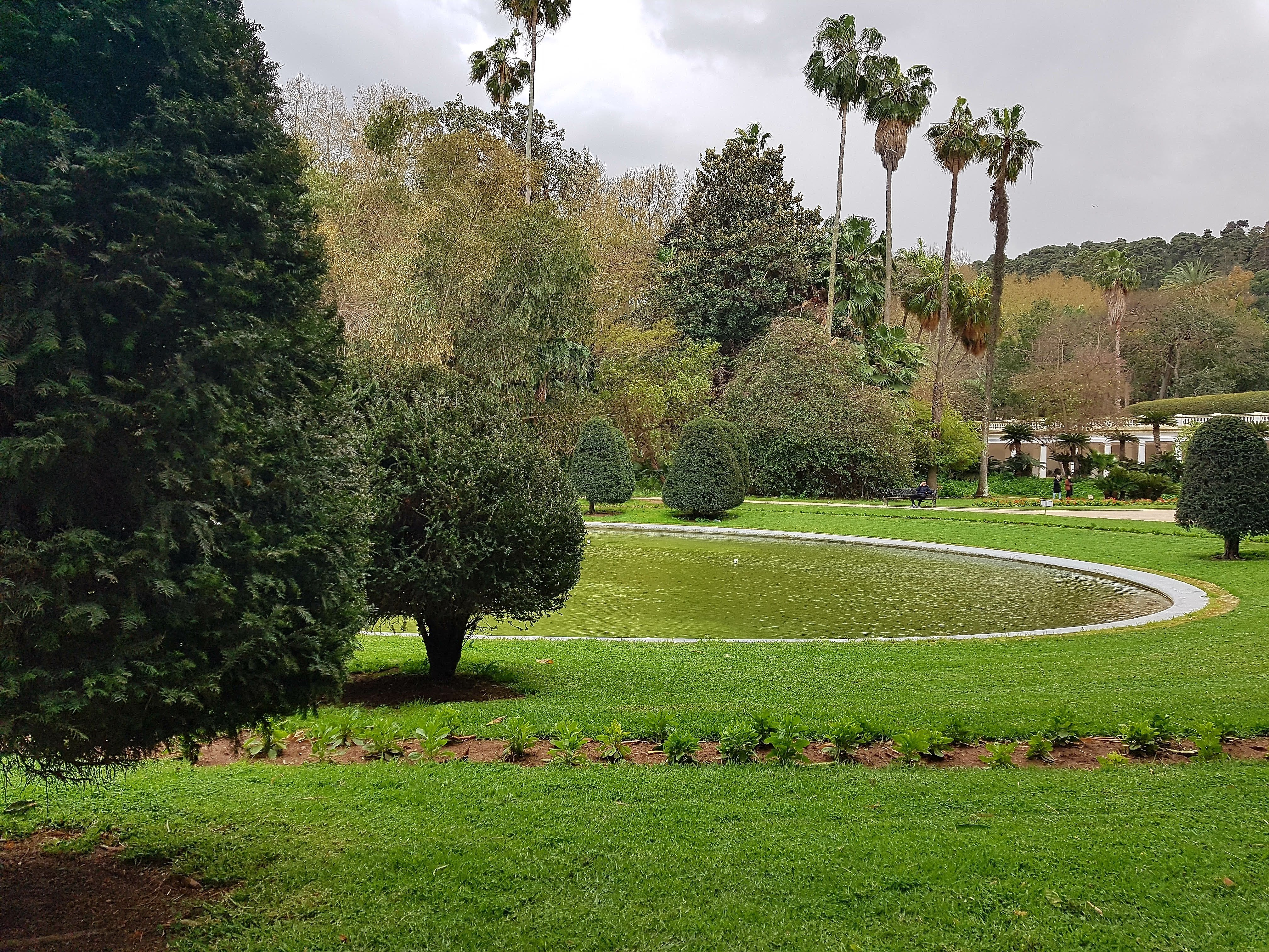 Jardin d'Essai du Hamma things to see and do in Algeria