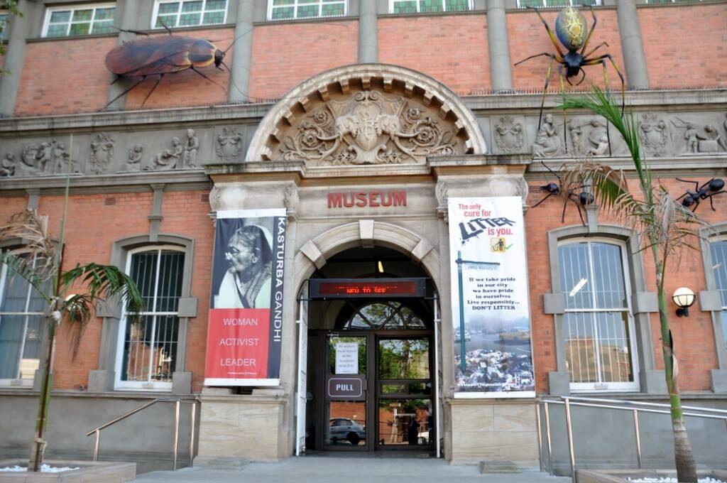 Kwazulu-Natal Museum top museums in south africa
