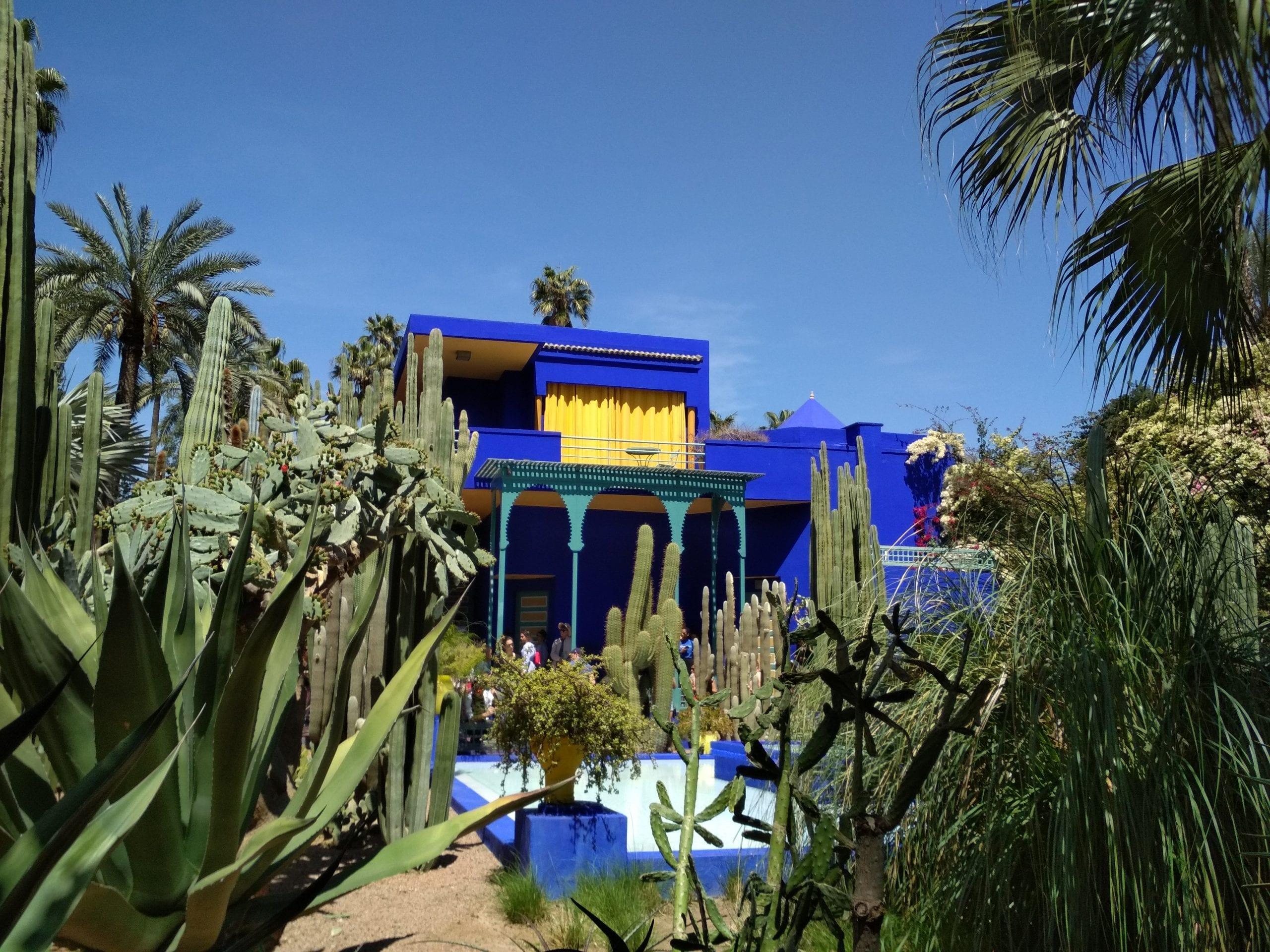 Top Reasons to Visit Marrakech: Majorelle Garden (Yves Saint Laurent Museum)