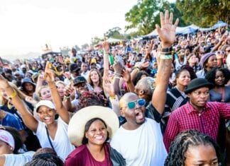 Top African Festivals: A Guide to Swaziland's MTN Bushfire Festival