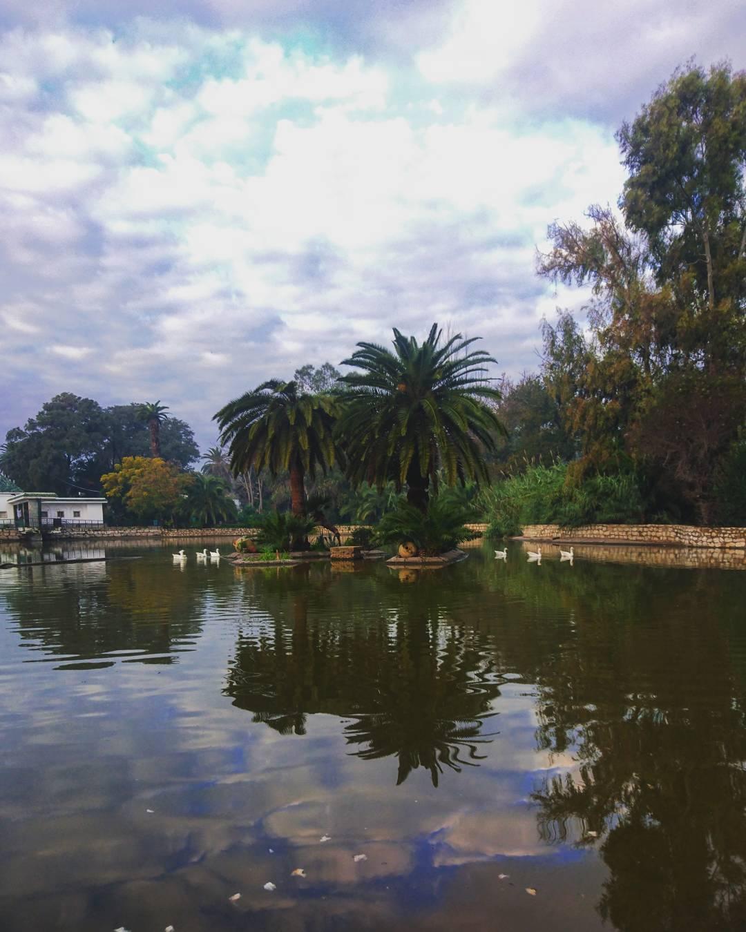 Belvedere Park top attractions in Tunis