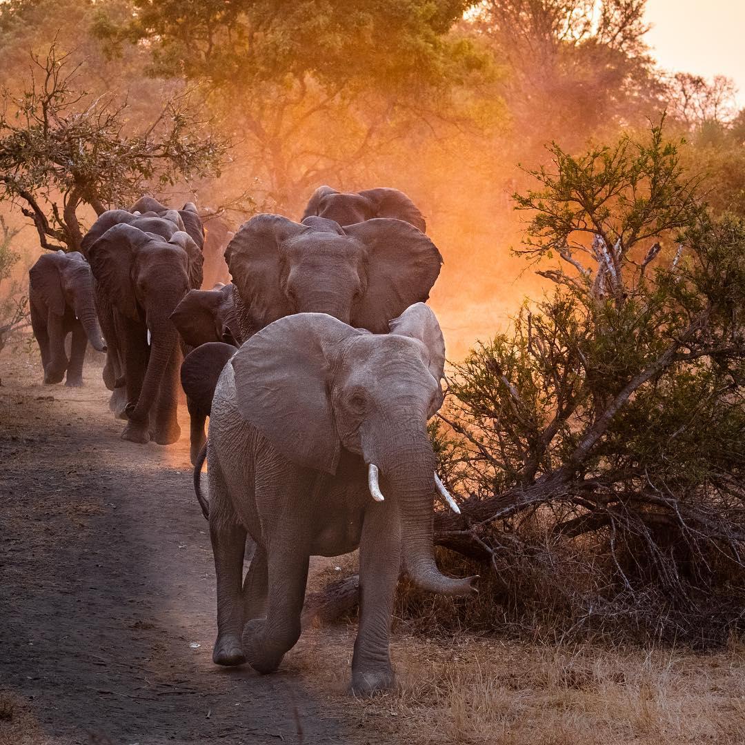 list of african safari destinations