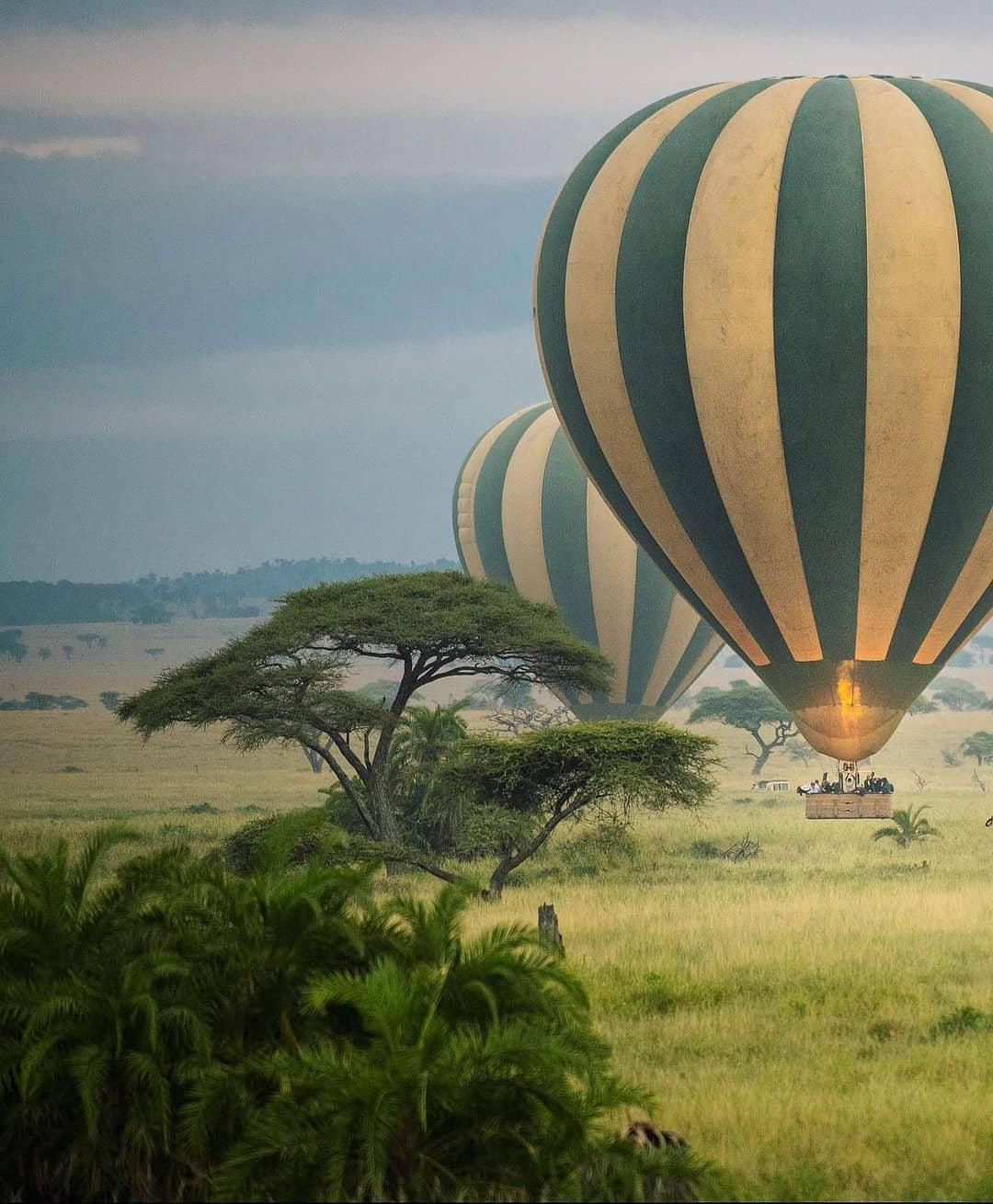 africa safari destinations