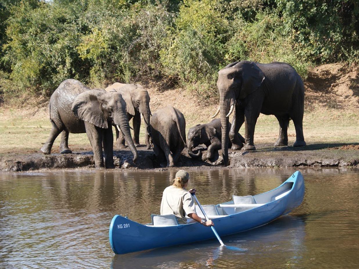 kafue park canoeing