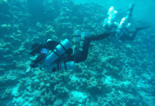 Tourist Attractions in Dahab