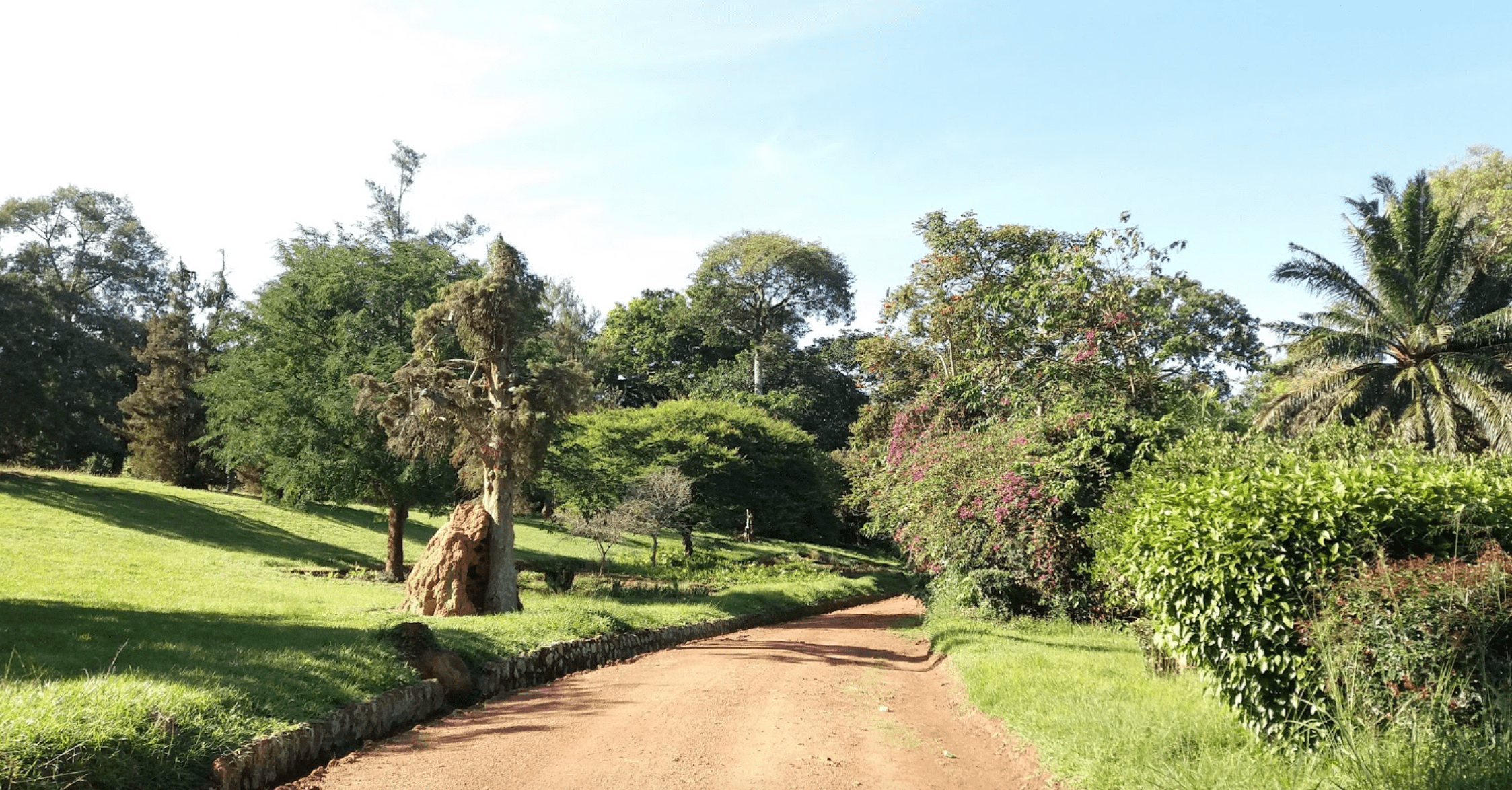 Entebbe Botanical Garden