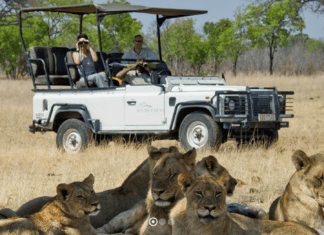 Guide to Kafue National Park