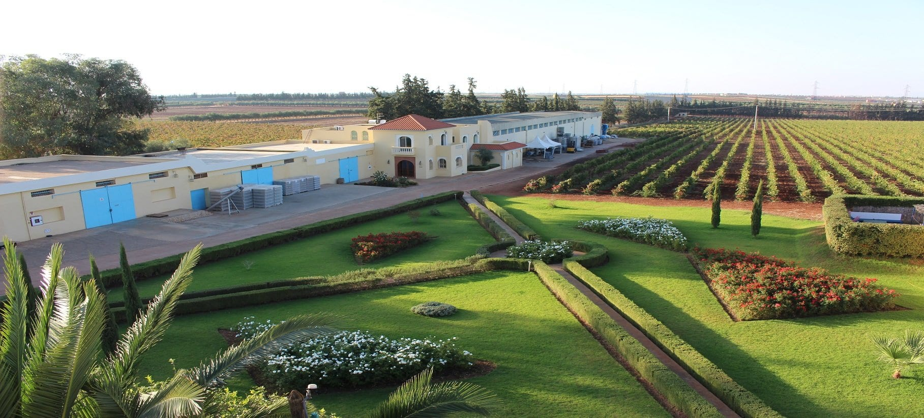 winery in Meknes