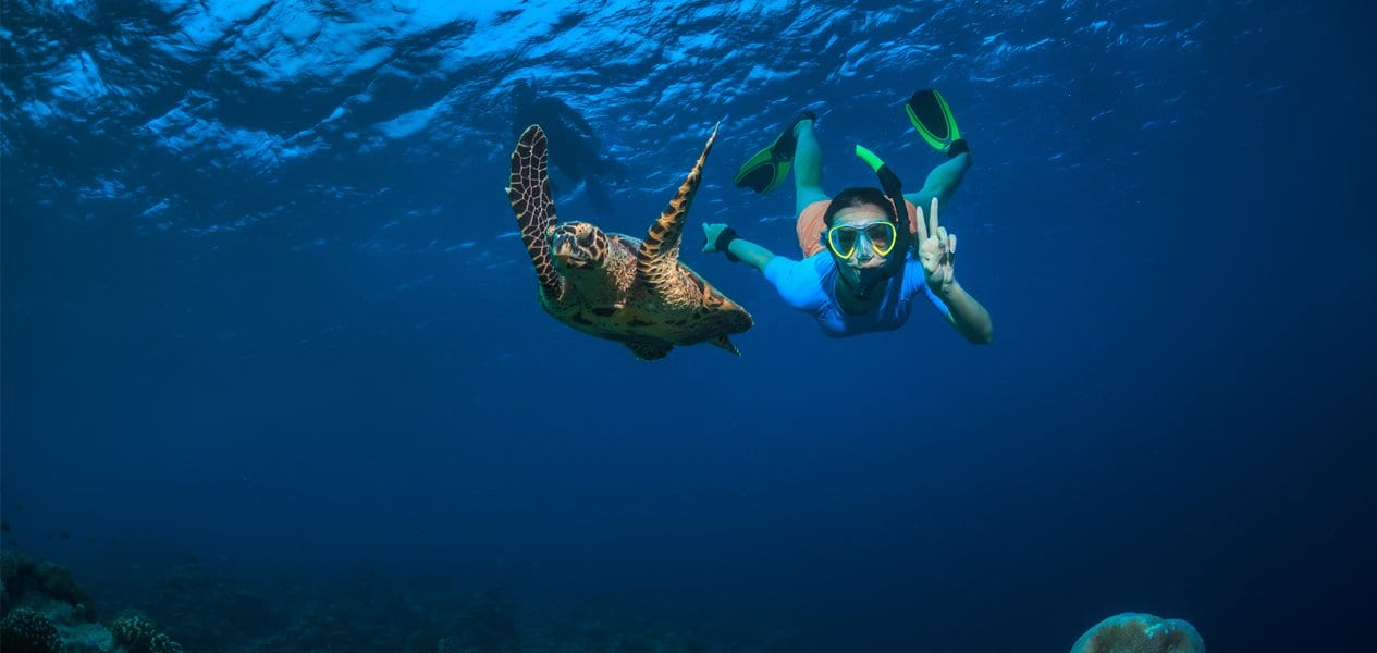 reasons to visit Seychelles and the best things to do in Seychelles