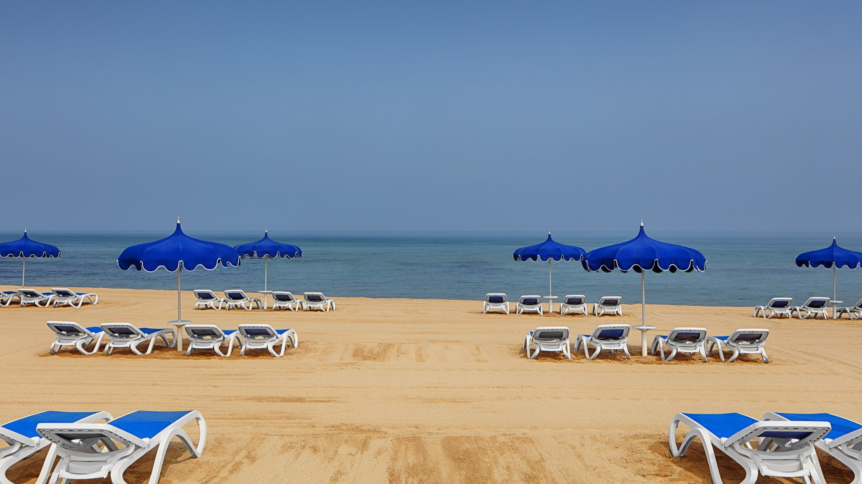 sheraton resort algiers