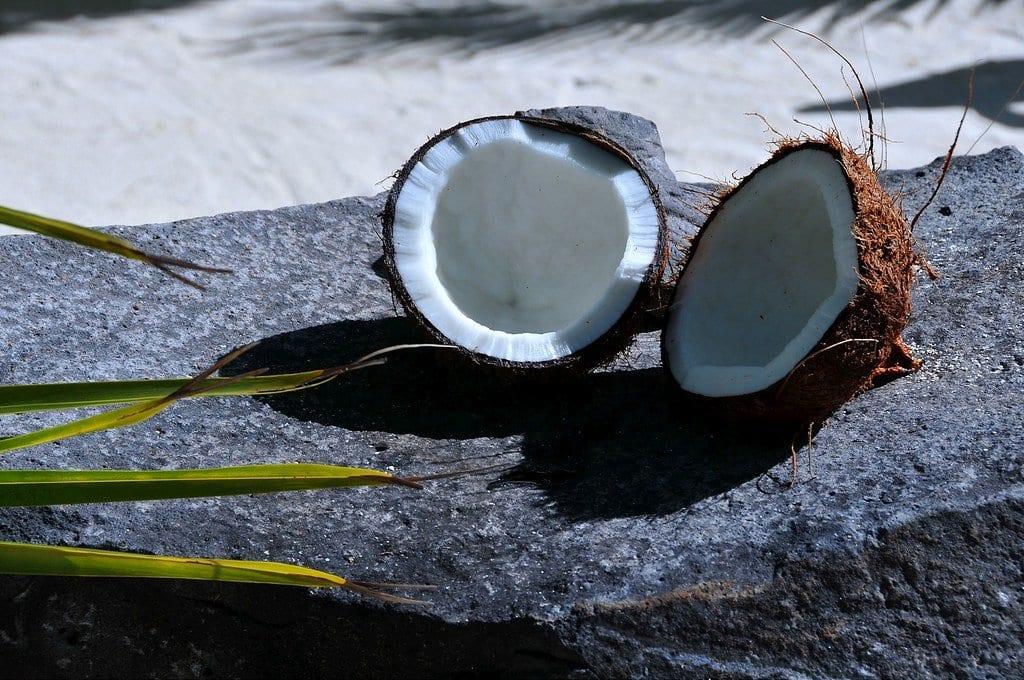 coconut healthy fruits