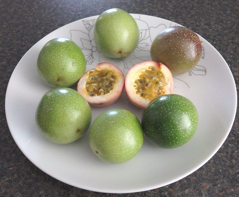 healthy passion fruits