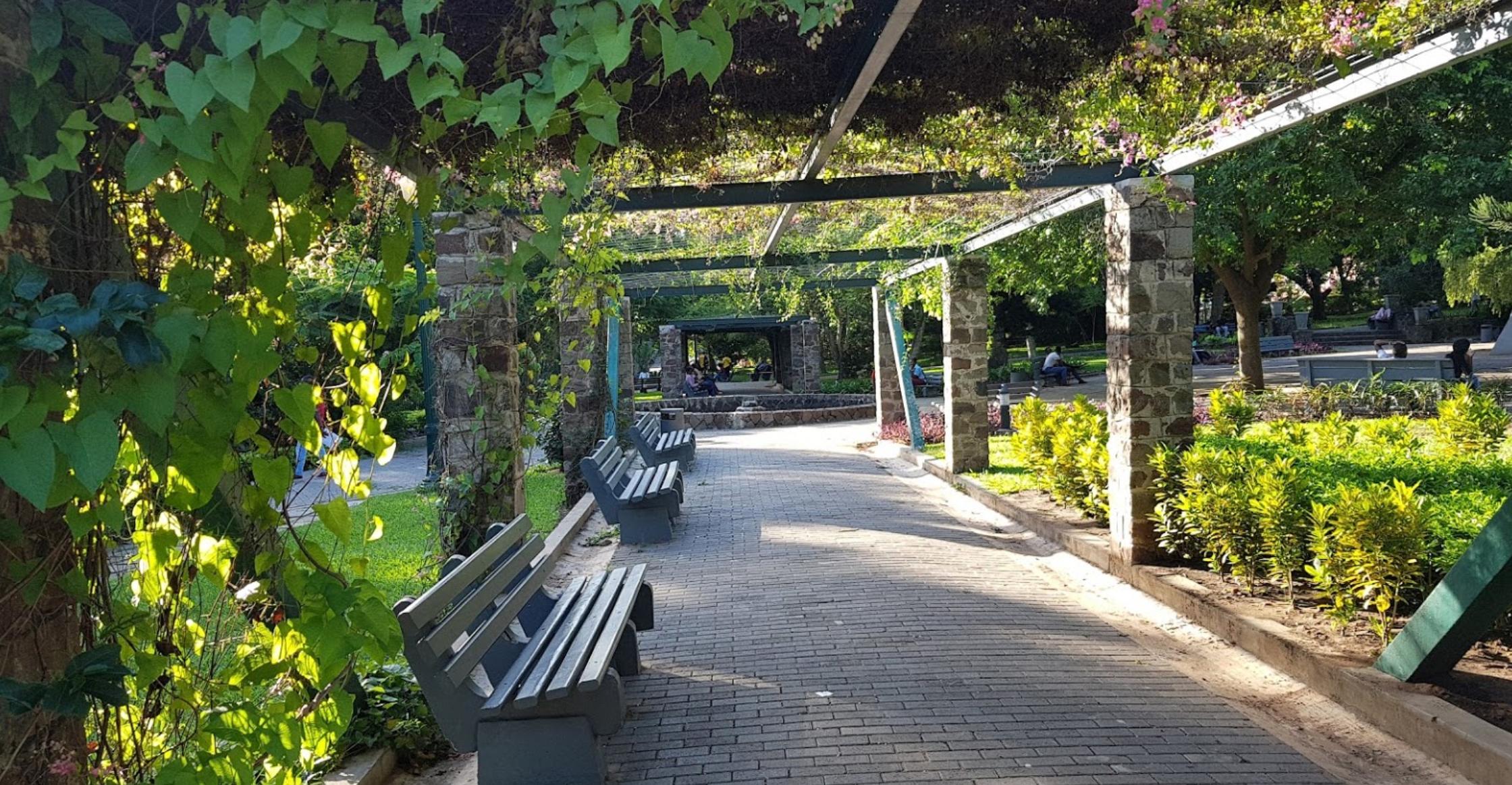 Maputo Botanical Gardens