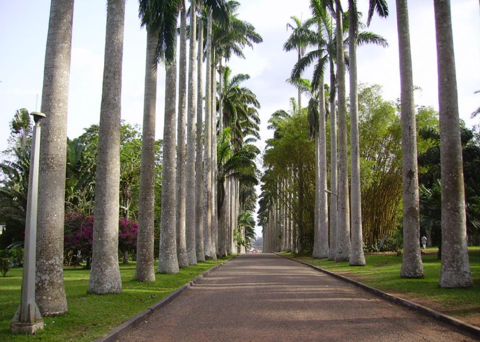 aburi gardens ghana