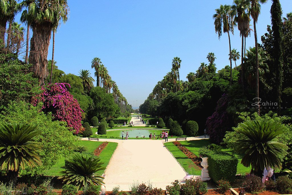 Test Garden of Hamma