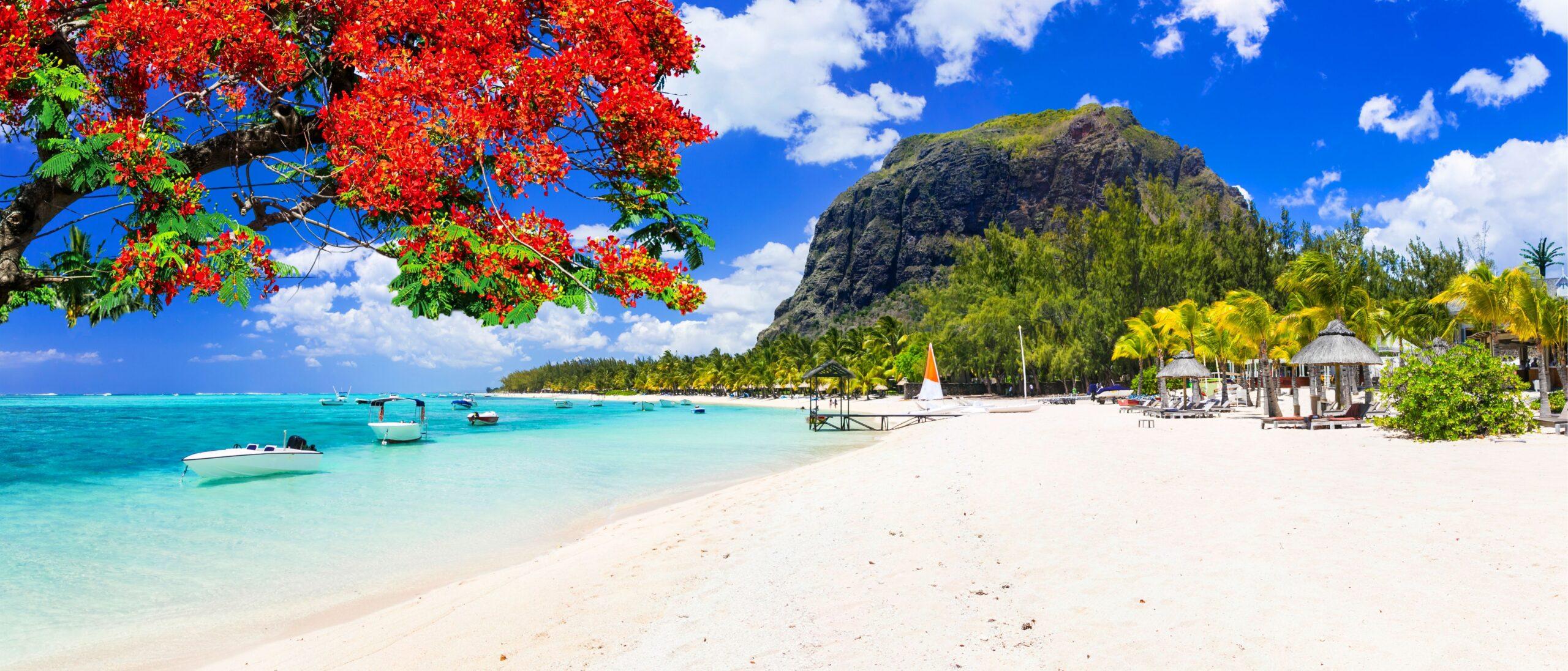Mauritius beach day