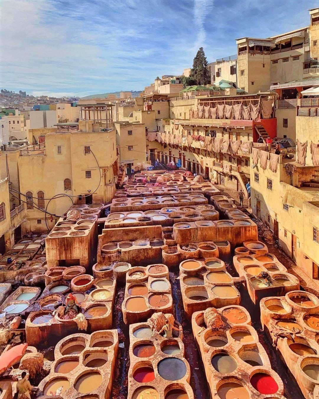 largest tannery Fes