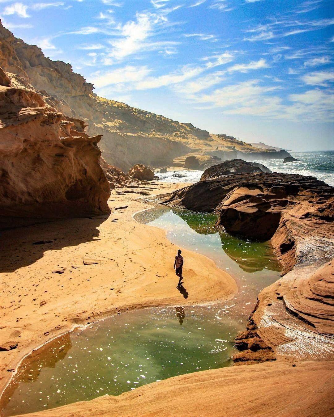 tamri surf morocco