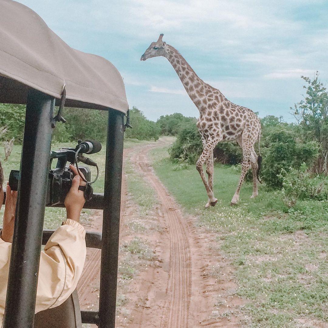 top actives in Botswana